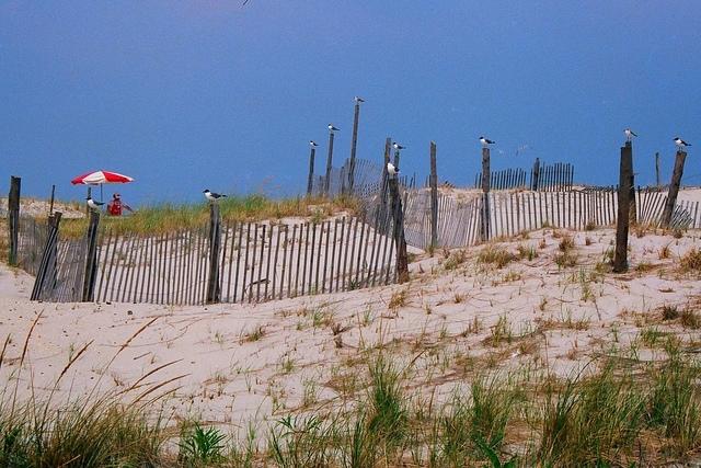 New Jersey beach shoreline